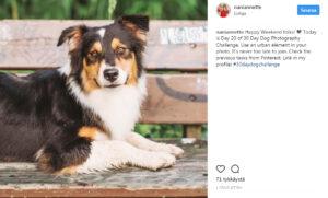Kuinka luoda toimiva Instagram strategia – 5 vinkkiä